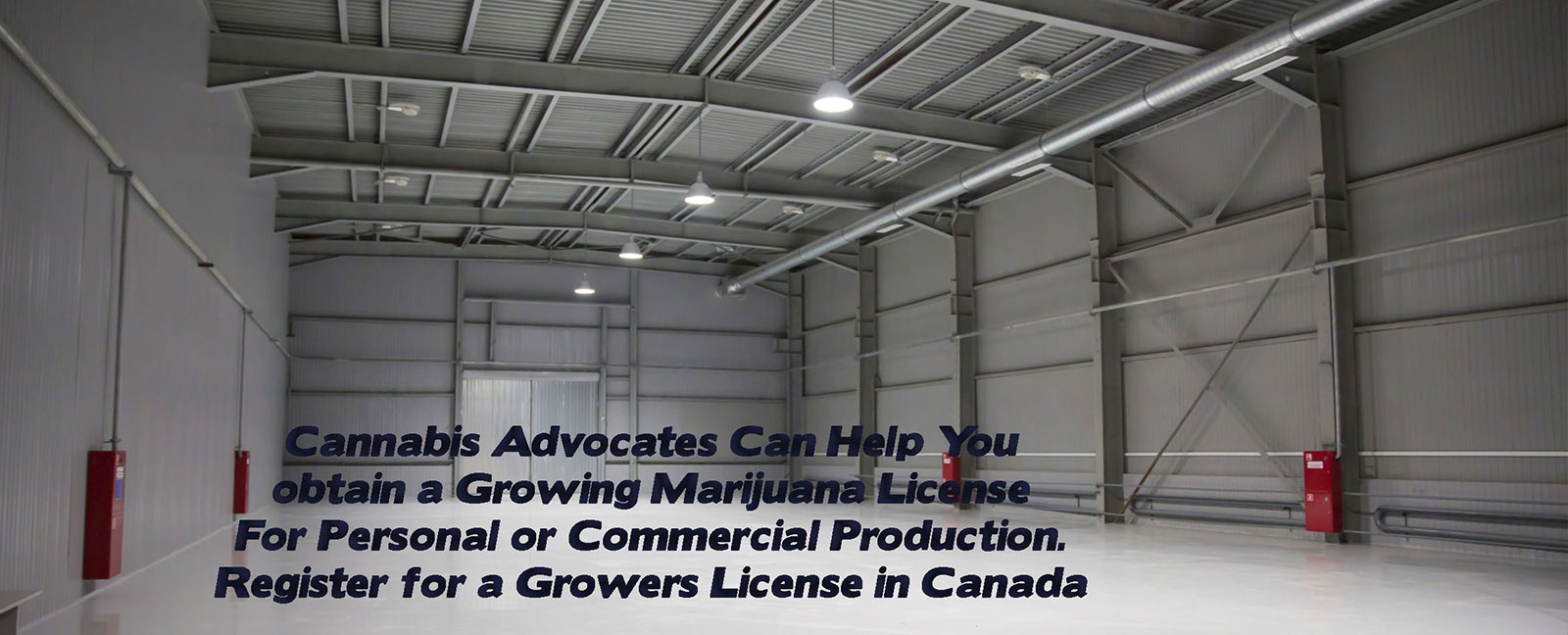 growing cannabis canada Cannabis Growing License growing medical marijuana grow pot growing medicinal marijuana